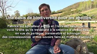 bluebees.fr/fr/project/539 - Une oasis de biodiversité pour les abeilles de Fabrice et Claire Bach - 47 Saint-Antoine de Ficalba